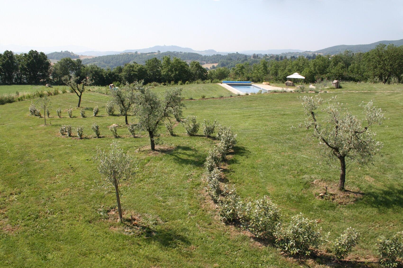 Professione garden designer ovvero quando il bello ha - Giardino mediterraneo ...