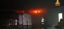 Cannara, grosso incendio nella zona industriale: bruciato capannone