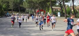 """Oltre 270 partecipanti per la manifestazione """"Muoviti e corri a Torgiano!"""""""