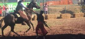 """""""Il mio regno per un cavallo"""""""