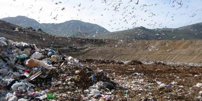 Questione rifiuti: cosa non è stato detto