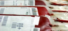 """Diminuiscono i donatori di sangue, l'Avis Provinciale di Perugia: """"Organico ridotto all'osso"""""""