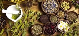 Naturopatia e Fitoterapia: le differenze