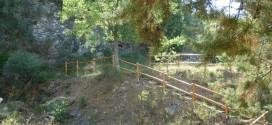 """Bocconi avvelenati per cani al parco di Lacugnano, Mori (Pd) lancia l'allarme: """"Il Comune intervenga subito"""""""