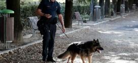 Umbertide, nasconde cocaina in casa ma i carabinieri lo scoprono: nei guai un 50enne di origine albanese