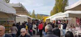 """Lega Nord Perugia: """"Parcheggiatori abusivi, per certe manifestazioni e per il mercato settimanale, serve un piano ordinario, non straordinario"""""""