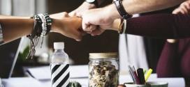 In crescita il numero di startup in Italia: quali le basi per il successo?