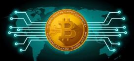Criptovalute: come trovare i migliori wallet per conservare le monete digitali